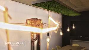 Moos•Moos Manufaktur Lampen Licht aus Moos