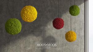 Moos•Moos Manufaktur Mooskugeln aus Islandmoos