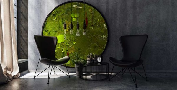 Eine runde Pflanzenmooswand in einem dunkel gehaltenen Wohnzimmer.